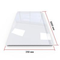 Панель ПВХ Кронапласт Белая глянцевая 3000х250х8 мм